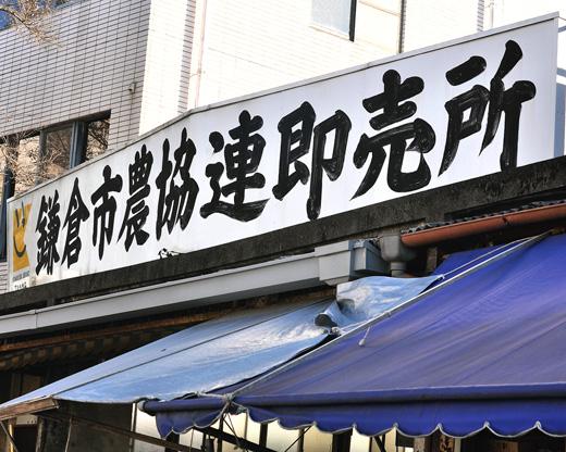Kamakurasokubai.jpg